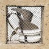 Broken Quarantine Sculpture by Niko Yulis